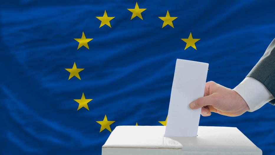 Vasárnap európai parlamenti képviselőket választ az ország