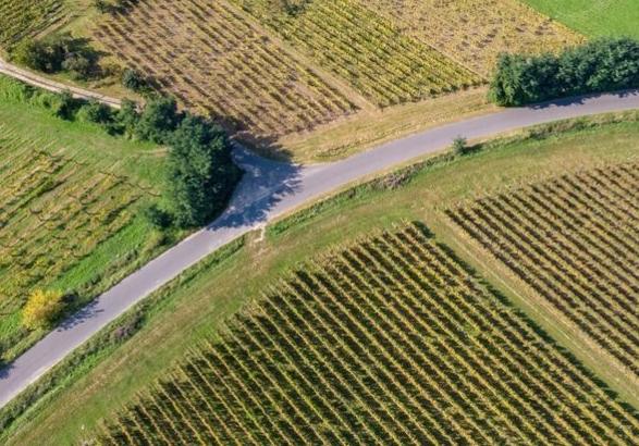Két kisebb állami földrészletet értékesítenek Torony határában