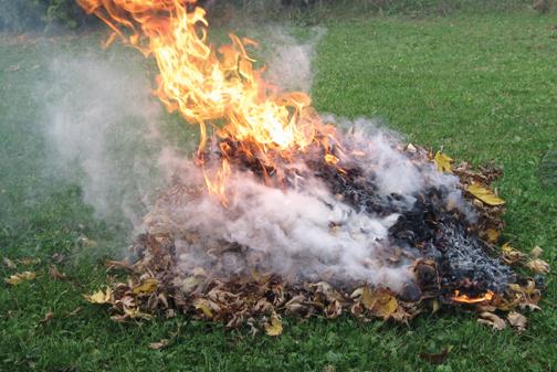 Hatályon kívül helyezték az avarégetésről szóló önkormányzati rendeletet