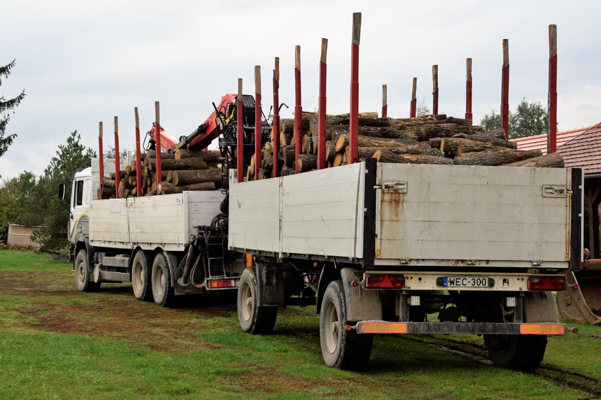 Megérkezett Toronyba a szociális célú tűzifa első szállítmánya