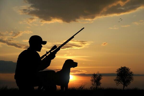 Az elkövetkezendő hétvégén is több helyen lesz vadászat Torony közelében